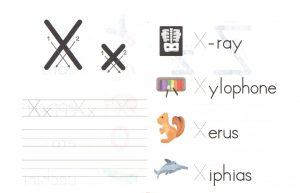 alphabet-capital-and-small-letter-X-x-worksheet-for-kids