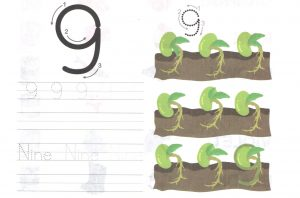 nine-9-worksheet-for-learning-numbers