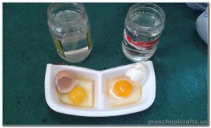eggs activities