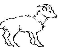free Goat Coloring Pages for kids
