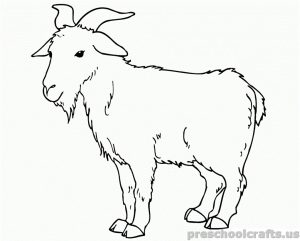 free printable Goat Coloring Pages for preschooler