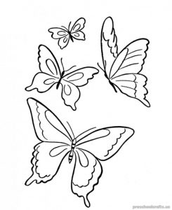 Free–printable-animals butterfly-coloring-pages-for-kids