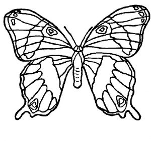 Free–printable-animals-butterfly-coloring-pages-for-kids