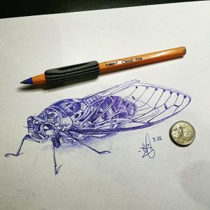 cicada art activities for adult