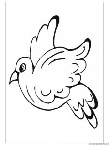 swallow animals coloring pages for preschool