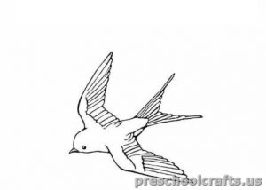 swallow free printable coloring pages for kids
