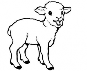 sheep-coloring-page-for-preschool-free-coloring-page-for-kids
