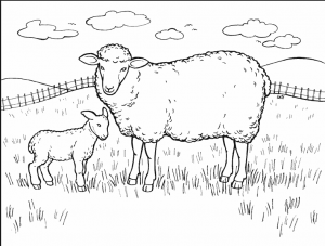 sheep-coloring-pages-for-preschool-free-printable