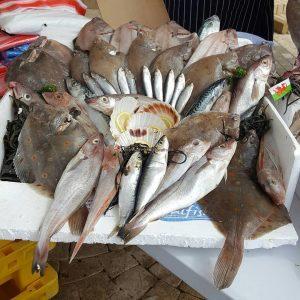 fish-crafts-ideas-for-kindergarten