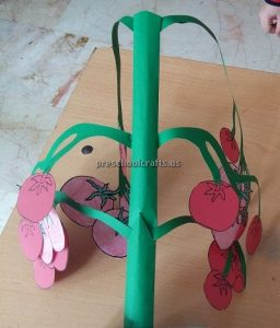 Tomato Craft Ideas for Kindergarten - Spring Fruits Craft Ideas