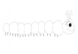 Caterpillar trace line worksheet for preschool