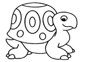 free printable turtle, tortoise coloring pages