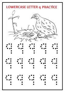 Lowercase letter q practice worksheet preschool, kindergarten and 1st grade