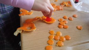 mandarin tree craft idea for kids